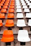 Oranje zetel in arena Royalty-vrije Stock Foto's