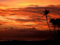 Oranje zon Royalty-vrije Stock Foto