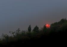 Oranje zon die achter gesilhouetteerde bomen en heuvel plaatsen Royalty-vrije Stock Afbeeldingen