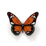 Oranje zonnevlinder Royalty-vrije Stock Afbeelding
