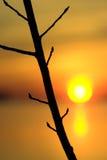 Oranje zonsondergang Stock Afbeeldingen