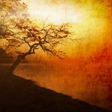 Oranje zonsondergang royalty-vrije illustratie