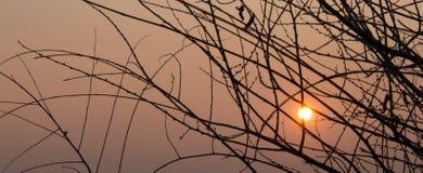 Oranje zonsondergang met gouden zon Stock Afbeelding
