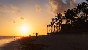 Oranje zonsopgang over de kust van de Atlantische Oceaan met palmen Stock Foto