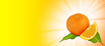 Oranjegele achtergrond Stock Foto