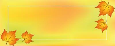 Oranjegele backgraound met de herfstbladeren Stock Afbeeldingen