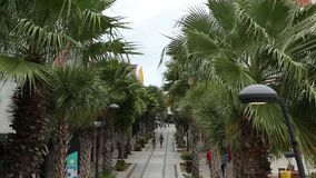 Oranjestad, Aruba Main Street stock video