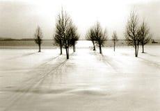 Orario invernale illustrazione vettoriale