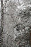 Orario invernale Fotografia Stock