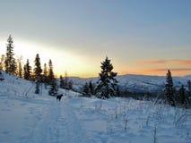 Orario invernale in Norvegia Fotografia Stock Libera da Diritti