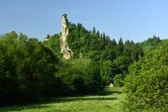 Orava Castle, Slovakia royalty free stock images