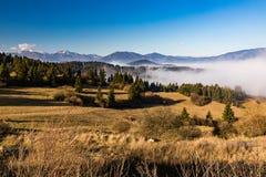 Orava-Natur übersehen Lizenzfreie Stockbilder