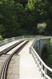 Oravita -阿尼纳铁路 图库摄影