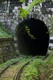 Oravita - Anina järnväg Royaltyfri Fotografi