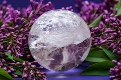Orb f?r kristall f?r sf?r f?r Lemurian frik?ndkvarts som magisk omges av den purpurf?rgade lila blomman arkivfoto