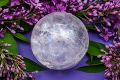 Orb f?r kristall f?r sf?r f?r Lemurian frik?ndkvarts som magisk omges av den purpurf?rgade lila blomman fotografering för bildbyråer