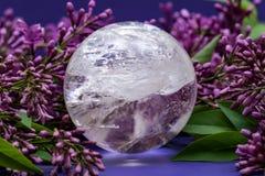 Orb f?r kristall f?r sf?r f?r Lemurian frik?ndkvarts som magisk omges av den purpurf?rgade lila blomman royaltyfri fotografi