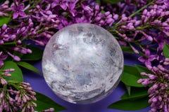 Orb f?r kristall f?r sf?r f?r Lemurian frik?ndkvarts som magisk omges av den purpurf?rgade lila blomman royaltyfria foton