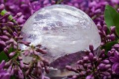 Orb f?r kristall f?r sf?r f?r Lemurian frik?ndkvarts som magisk omges av den purpurf?rgade lila blomman arkivfoton