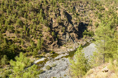Orba river flows in deep gorge near Tiglieto, Italy. Landscape with the Orba river flowing in deep gorge in Ligure inland near Tiglieto, Italy Stock Image