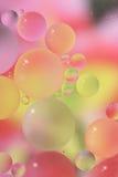 Orbes del resorte Imagen de archivo libre de regalías