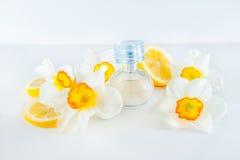 Orbicular doftflaska som omges av nya påskliljablommor och citronskivor som isoleras på vit bakgrund Gul färgconcep Fotografering för Bildbyråer