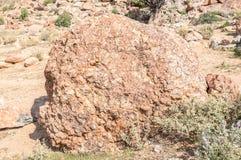 Orbicular granit på den Orbicular kullen nära Concordia Arkivfoton
