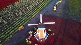 Orbit view of windmill in tulip farm. This is an orbit view aerial video of the windmill in Wooden Shoe tulip farm stock footage
