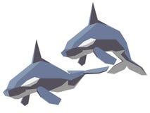 Orca Fotos de Stock