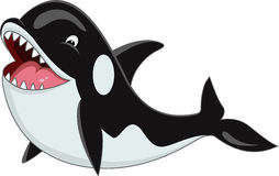 Orca cartoon Royalty Free Stock Photos