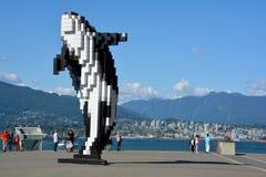 Orca de Digitas Foto de Stock Royalty Free