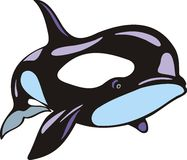 Orca fish isolated Stock Images