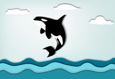 Orca_III Royalty Free Stock Images