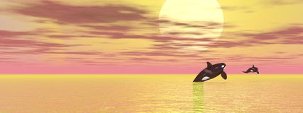 Orca journey - 3D render Royalty Free Stock Photography