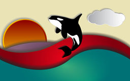 Orca sunset. Orcinus orca, Killer whale jumping in sunset, vector Royalty Free Stock Image