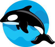 Orca Whale. On a blue circle background Royalty Free Stock Photos