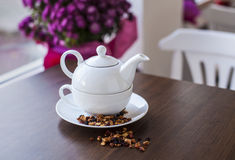 Рorcelain teapot with dried fruit Royalty Free Stock Images