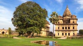 orcha ландшафта Индии cenotaphs рисуночное стоковые фотографии rf