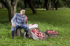 Orchard Stock Photos
