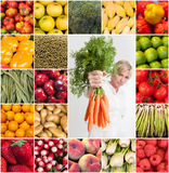 Orchard collection Royalty Free Stock Images