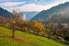 Orchard on the hill. village down in the valley. Haze and smoke around the mountains. beautiful autumnal countryside scenery royalty free stock image