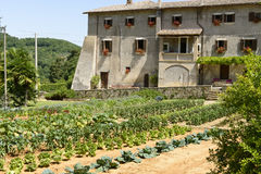 Orchard and La Foresta Franciscan monastery, Rieti Royalty Free Stock Photos