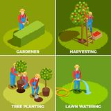 Orchard Management Design Concept. Gardener isometric people 2x2 design concept with human characters in hats and pinafores with gardening tools vector Stock Photos