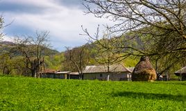Orchard near the village in springtime. Lovely rural scenery in mountainous area, haystack on the grassy lawn Royalty Free Stock Image