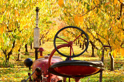 Orchard Tractor Close royalty free stock photography