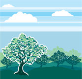 Orchard vector illustration Royalty Free Stock Photo