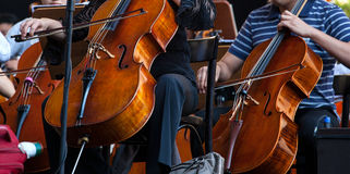Orchestra. View of the Orchestra in concert - Cello musical instrument stock photography