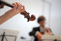 Orchestra of classical music with violin Royalty Free Stock Image