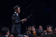 Orchestra Conductor Stock Photography