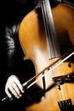 Orchestra instruments cello. Classical musical instrument on black Stock Photos